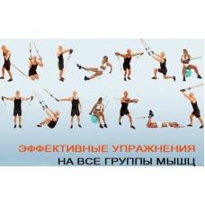 Эспандер лыжника, боксёра, пловца UR HO-4719-4 (резин.жгут d-8мм, l-4м, ручки полиэстер, черный-голубой)